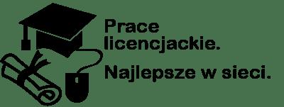 Prace licencjackie i magisterskie | pisanie  tekstów, pomoc na zamówienie